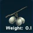 Stimberry Symbol