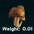 Rare Mushroom Symbol