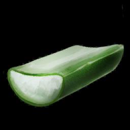Cactus Sap Symbol