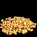 Longrass Seed Symbol
