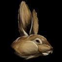 Procoptodon Bunny Costume Symbol